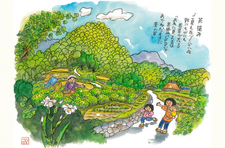小向井氏による明るい農村やぶきたのイメージ